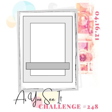 challenge 248 1